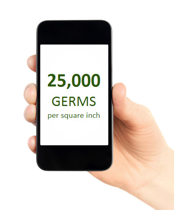 phone germs